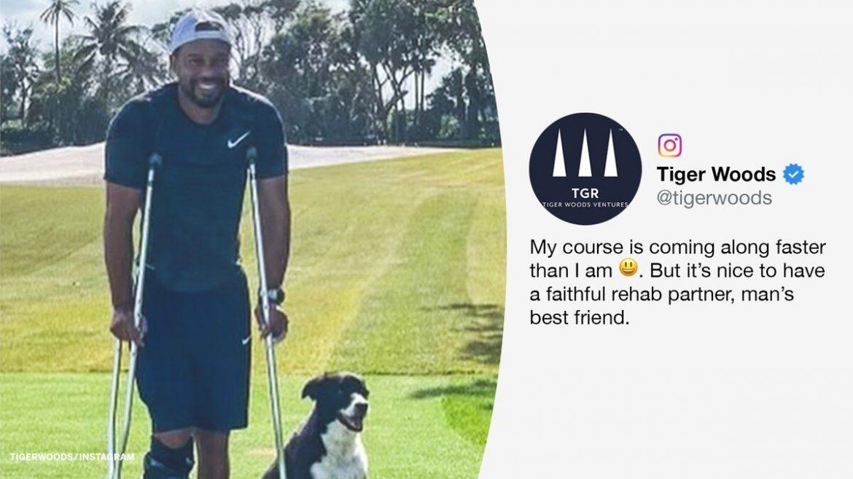 Tiger Woods sedang belajar berjalan